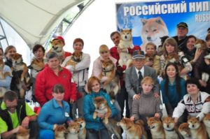 NIPPO 2013 год, Россия